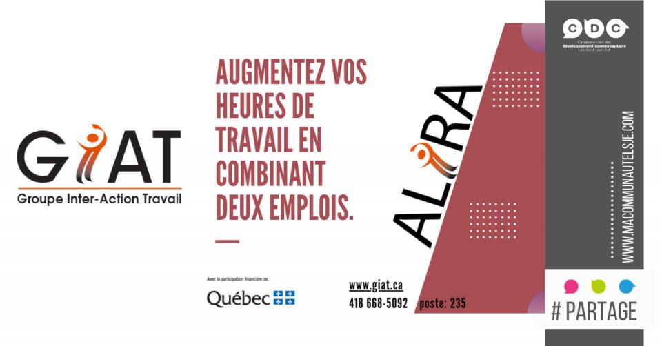 Projet Alira | Questionnaire sur les besoins des organismes