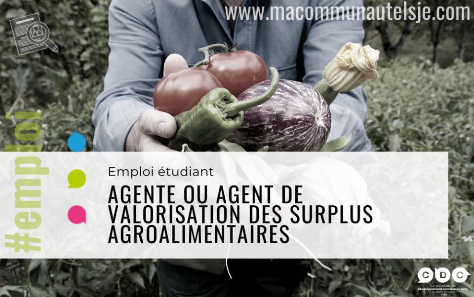 Agente ou agent de valorisation des surplus agroalimentaires (étudiant)
