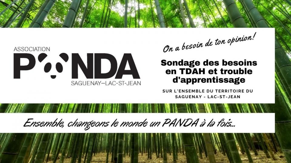 Sondage des besoins en TDAH et trouble d'apprentissage au Saguenay-Lac-St-Jean